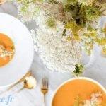 livre recette soupe blender chauffant